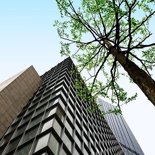 green view gestao ambiental nas empresas sao paulo