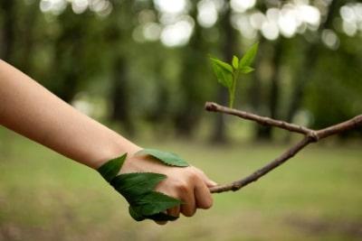 greenview gerenciamento ambiental sao paulo